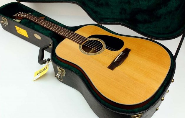 Martin DX1 series impress players with their delicate look